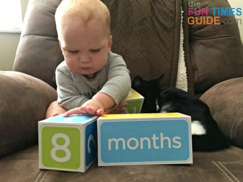 baby age blocks are great for photographing milestones