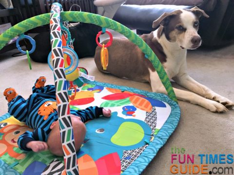 baby play mat activity center - on my top baby things list