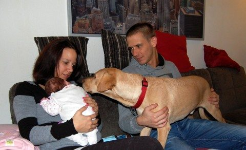 new-baby-and-dog